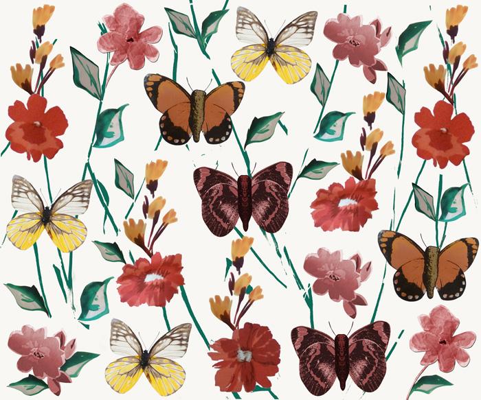 Casulos e flores